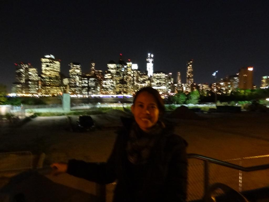 The Manhattan Skyline (taken from Brooklyn)