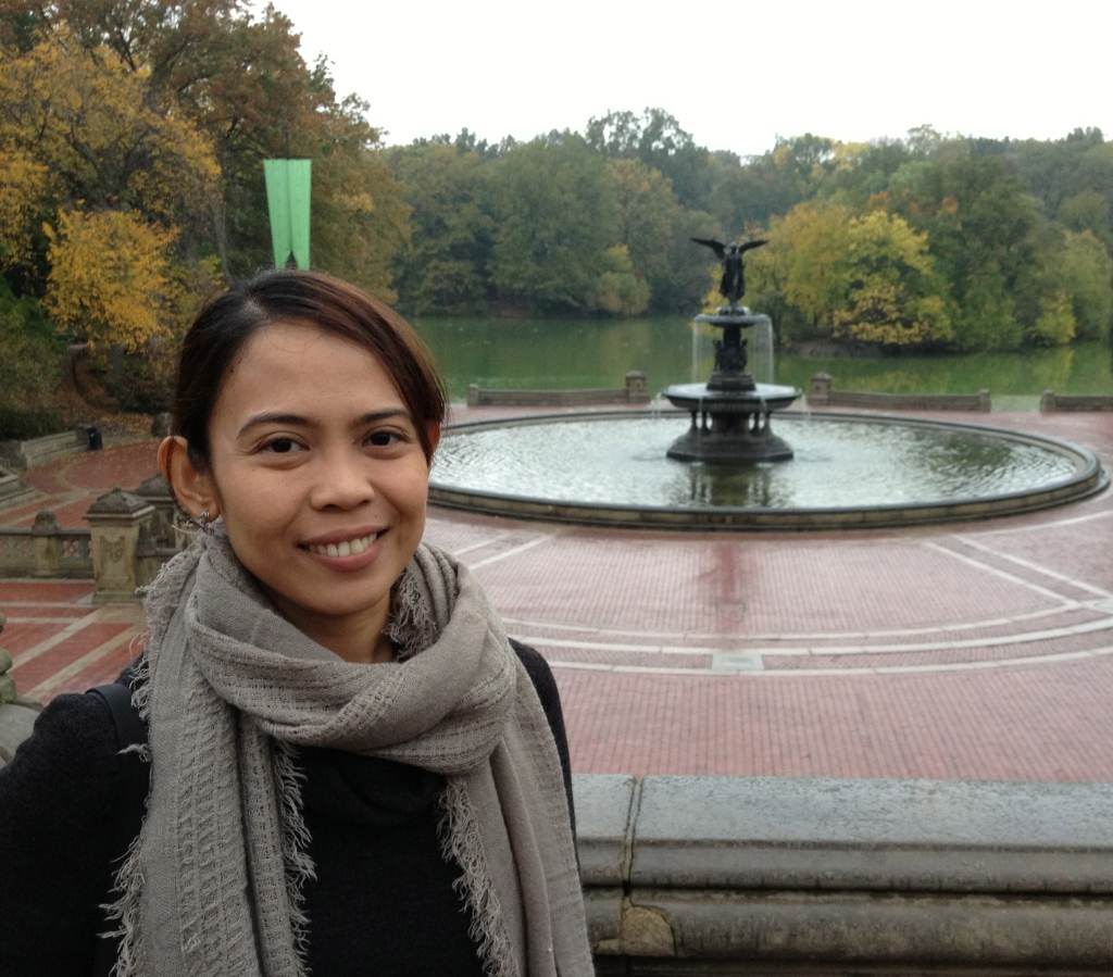 Central Park without the huge crowd (because it was raining ;) )
