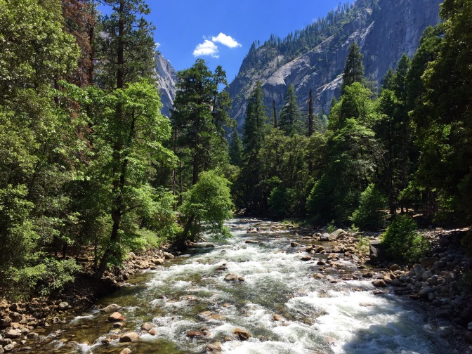 Summer in Yosemite (2015)