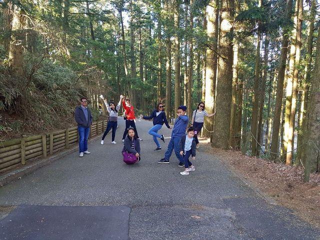 Rokko forest